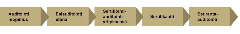 Auditointiprosessi